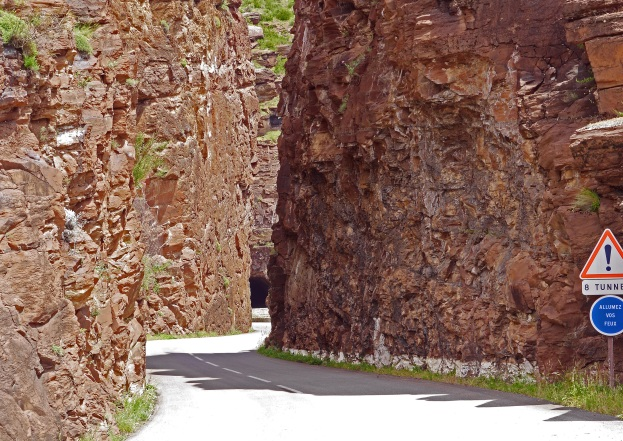 tree-rock-plant-wood-trunk-wall-552988-pxhere.com